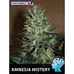 Amnesia Mistery (10uni)