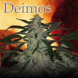 Deimos (5uni)