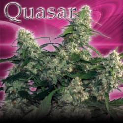 Quasar (5uni)