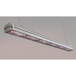 Lampara LED VALOYA B100 B67 120cm