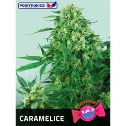 Caramelice (10uni)
