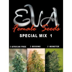 Special Mix 1 (6uni)