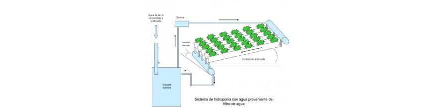 Hidroponia y Riego