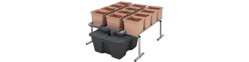 Sistemas De Cultivo